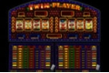 Twin Player casino slot